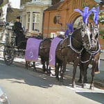 carlton_carriages_016_purple