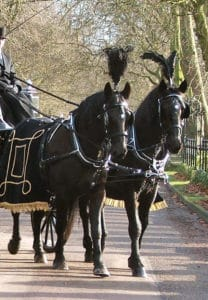 Funeral Carriage with Diesel & Danny