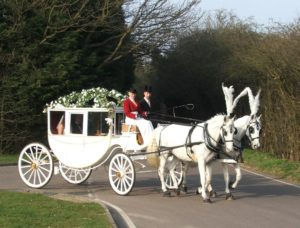 Carlton Carriages Boris and Tzar pulling the Glass Coach