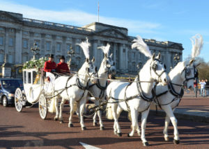 Carlton Carriages Glass Coach and four-in-hand team outside Buckingham Palace